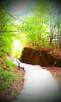 Indian Ladder Trail, Altamont NY.
