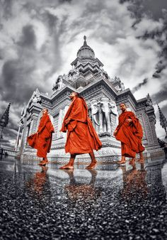 Buddhist Monks (Cambodia)