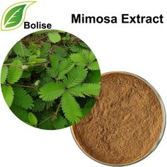 297 Best Herbal Extracts images in 2019 | Herbal extracts