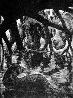 Wood engraving illustrating Tarka the Otter Engraving Illustration, Children's Book Illustration, Book Illustrations, Nature Artists, Children's Picture Books, Wood Engraving, Gravure, Illustrators, Book Art