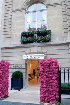 Fresh Flowers in Paris