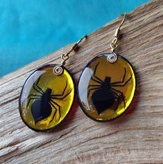 Spider Earrings, Drop Earrings, Resin Jewelry, Jewellery, Crystal Resin, Green Butterfly, Diffuser Necklace, Butterfly Jewelry, Orange