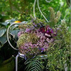 Nel giardino delle fate anche lo sfiorito ha un suo perche' - by tyziana - Furighedda gardening
