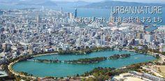 landscape of beautiful Fukuoka city.