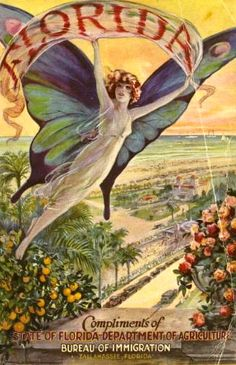 florida bureau of immigration welcomes all flying creatures Vintage Advertisements, Vintage Ads, Graphics Vintage, Vintage Comics, Vintage Photos, Vintage Dresses, Vintage Travel Posters, Vintage Postcards, Vintage Florida