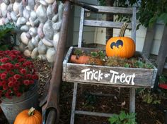 Trick or Treat Halloween Decoration  by WelcomingWalls