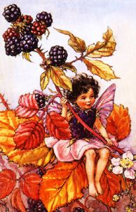 Family Flower Fairies