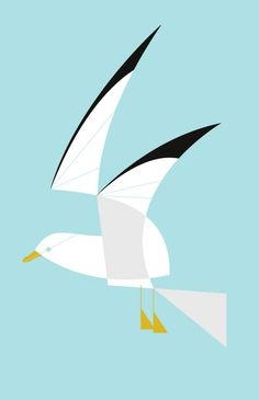 Seagull by Charlie Harper
