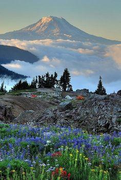 Hike Mount Adams (Washington) http://higgylife.blogspot.com/ for notes