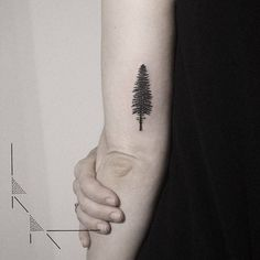 Pine tree tattoo on the back of the left arm.