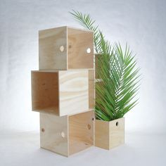 • PLY MILK CRATE : Like Butter www.likebutter.com.au I like these - could be shelves, side tables, planter boxes....