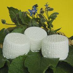 """""""Le Castagnelle"""" produce e vende nella sua fattoria non lontana dalla casa FRUTTA, VERDURA, CACIORICOTTA, OLIO EXTRAVERGINE DI OLIVA, VINO ROSSO e altri prodotti rigorosamente biologici."""