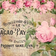 Pink Roses on ad.