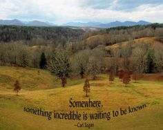 Inspirational quote by Carl Sagan.  Somewhere, something incredible is waiting to be known.