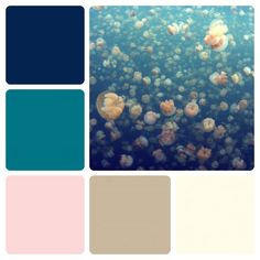 My Wedding Color Palette - Navy, teal, blush, champagne and ivory.