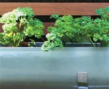 """""""Montei um painel ripado de 4 x 2 m, que, além de sustentar as jardineiras, tornando-as mais acessíveis, ajuda a deixar o espaço menos devas..."""