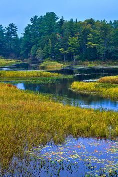 #ADK #Adirondacks #MooseRiver The Meandering Moose River - Old Forge New York