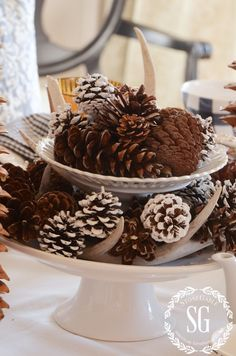 LATE FALL, ALMOST CHRISTMAS HIGH TEA, The centerpiece could not have been easier to put together! A pedestal cake plate and a small pedestal on top of it. I filled it in with deer sheds and various types of pinecones. Easy-peasy with an almost winter look!