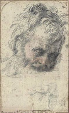 Andrea del Sarto (1486–1530),  Study for the Head of St. Joseph, ca. 1526–27. Red and black chalk, 14 11/16 x 8 11/16 in. (37.3 x 22 cm). Private Collection.