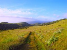 4. A path with a view at the splendid Starr Ranch.