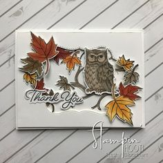 2018 Blended Seasons Bundle & Still Night Bundle Thank You Card by Stesha Bloodhart, Stampin' Hoot! for Challenge Leaf Cards, Bird Cards, Fall Cards, Christmas Cards, Holiday Cards, Stamping Up Cards, Rubber Stamping, Owl Card, Thanks Card