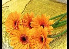 صور ورد اصفر رمزيات باقة ورد صفراء خلفيات ورد اصفر طبيعي مجلة رجيم Beautiful Flowers Wallpapers Most Beautiful Flowers Beautiful Flowers Photos