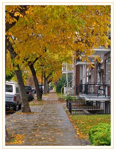 Montreal This looks like my mom's neighborhood Canada Toronto, O Canada, Great Places, Places Ive Been, Quebec Montreal, Belle Villa, 10 Picture, Parcs, Photos