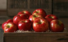 Experience a Honeycrisp Apple from The Fruit Company – from your first bite it's amazingly crunchy, incredibly juicy and sensationally sweet. Gourmet Gift Baskets, Gourmet Gifts, Gourmet Recipes, Apple Art, Red Apple, Fruit Company, Honeycrisp Apples, Apple Harvest, Autumn Harvest