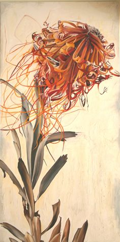 Protea is the national flower of South Africa. There are many different species of this amazing flower that grows in the Cape of Good Hope, South Africa. Botanical Painting, Asian Art, Drawing And Illustration, Botanical Art, Botanical Prints, Scientific Illustration, Protea Art, Beautiful Art, Floral Watercolor