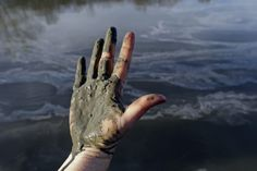 State Fines Duke Energy $25 Million For Coal Waste, Still Doesn't Require Cleanup - A hand covered with wet coal ash from the Dan River spill in February.