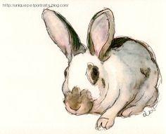 'House Rabbit' Animal Sketch, Pet Portraits