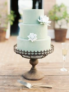 Mint cake accented with succulents