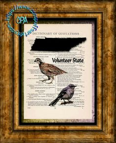 TENNESSEE State Black Silhouette, State Birds, State Nickname Art - Beautifully Upcycled Vintage Dictionary Page Book Art Print by CocoPuffsArt on Etsy