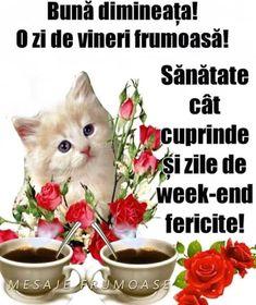 Morning Images, Good Morning, Messages, Motivation, Funny, Buen Dia, Bonjour, Funny Parenting