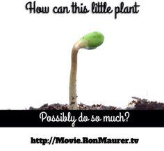 Enjoy this 3 part short movie ASAP! You'll be glad you did. http://youtu.be/3Fw1SxP_OPo #hemp #movie #ChooseHemp !