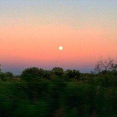 Blue moon rising. #lakeminnetonka #minnesota #mn #exploremn #tonkabay #lake #minnetonka #tonka #mnlakelife #lakelife #sky #bluemoon #fullmoon #nature #summer #sunset #trees #beautiful #moon