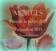 """Morges - Fête de la Tulipe 2013     """"... und hier für alle deutschsprachigen Liebhaber von Tulpen """"  Fait par Rose-Marie Pfortner"""
