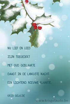 Kris Gelaude -Kerst en Nieuwjaar
