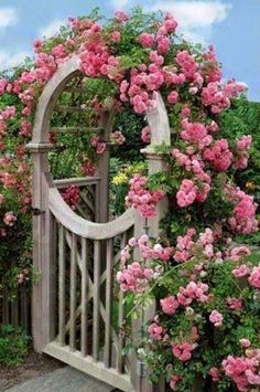 flowersgardenlove: Rose arch- what a be Beautiful gorgeous pretty flowers