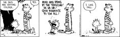 Calvin and Hobbes comic for Oct/18/13