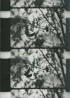 MESSAGES: GUY SHERWIN Underground Film, Video Installation, Monochrome Photography, Film Stills, Public Art, Medium Art, Frames, Cinema, Messages