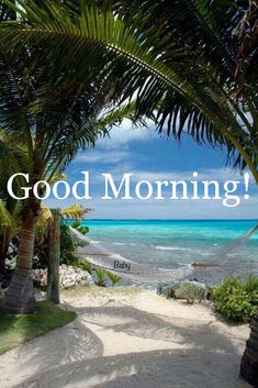 Good Morning Friends Images, Good Morning Beautiful Pictures, Beautiful Flowers Images, Good Morning Photos, Morning Pictures, Flower Images, Morning Images, Happy Sunday Morning, Happy Morning Quotes