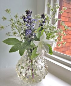 Flowers in vase: azalea, cow parsley, bugle and greater stitchwort