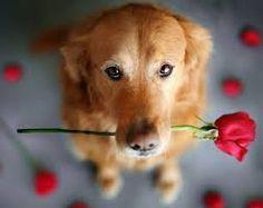 i am sooo sorry, my love....