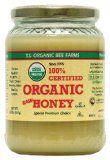 Stomach flu – stop vomiting with raw honey – herbalencounter