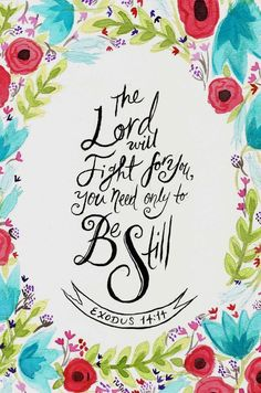 The Lord will fight for you ,  you need only to  Be Still .   Exodus 14:14