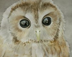 Owl. Forest Owl. Original Watercolor Painting. Big Black Eyes. Brown Owl. Realistic painting.