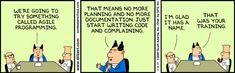 Agile Programming