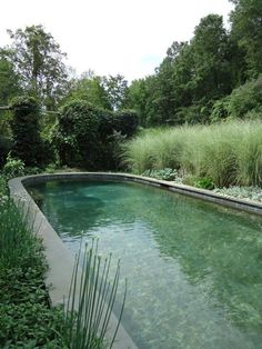 The bottom of the pool is intensely painted to look like a pond, with about nine different colors of paint