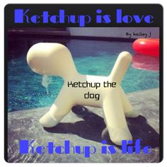 Another one by me, Hailey! Ketchup the dog!